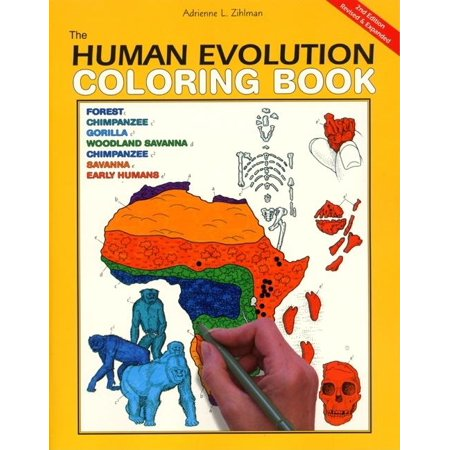 HarperCollins Coloring Books (Not Childrens): The Human Evolution ...