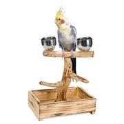Penn Plax Bird Life Small Tree Perch