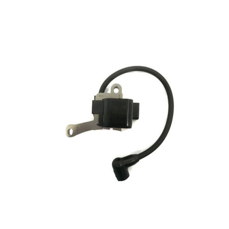 Solid State Disk Module ((2) SOLID STATE MODULE CD for Lawn-Boy 683215 683080 682702 Push Lawn Mower)