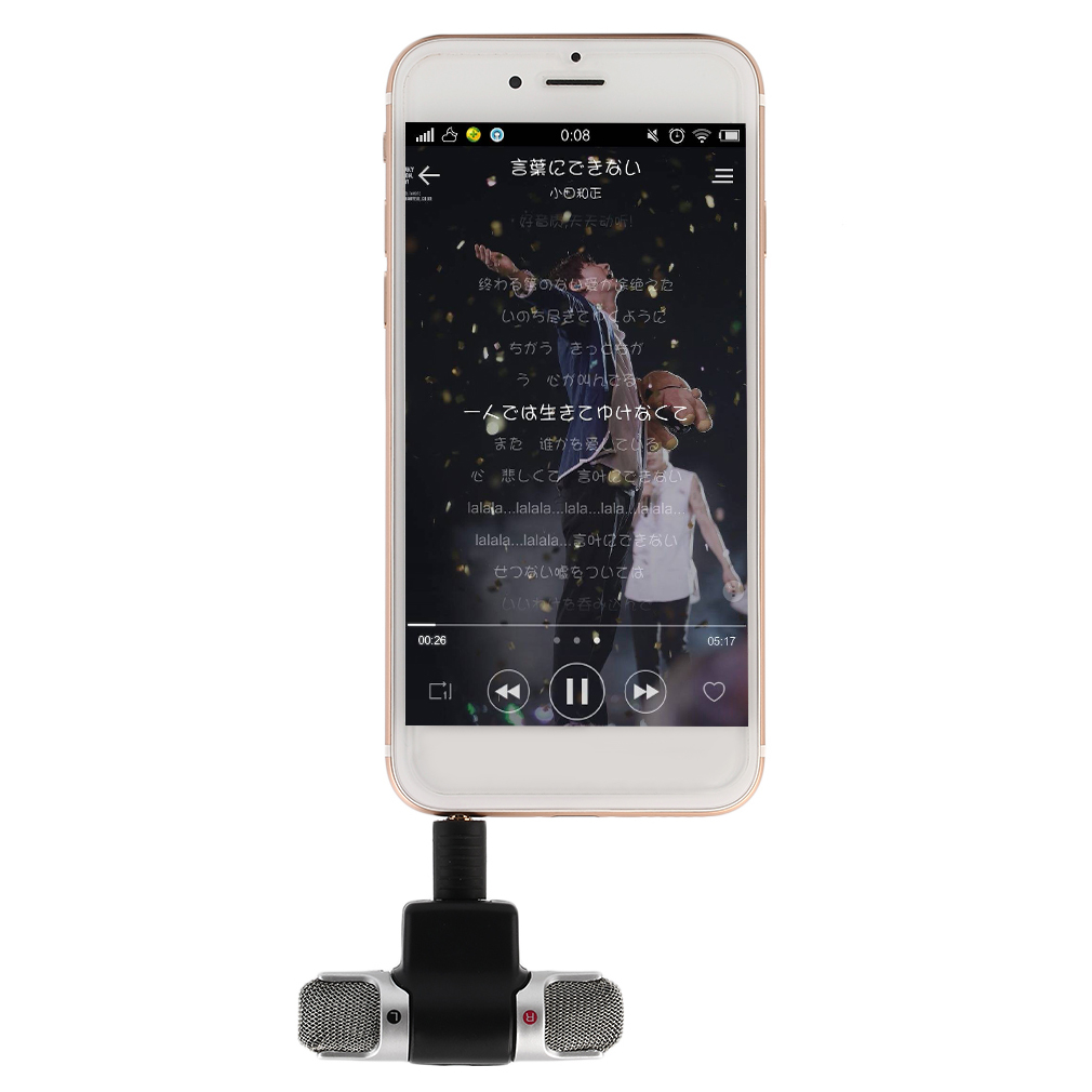 Portable Mini Mic Digital Stereo Microphone For Recorder Mobile Phone