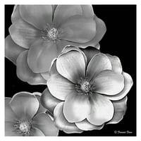 "Masterpiece Art Gallery Black & White Magnolia By Frannie Funn Canvas Art Print 30"" x 30"""
