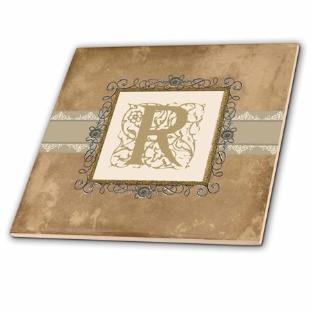 Pewter Tiles (3dRose R Initial Vintage Elegant Vines and Flowers in Sepia and Pewter Look - Glass Tile, 6-inch )