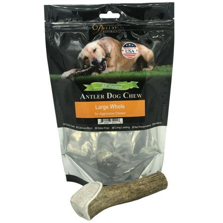 Deluxe Naturals Elk Antler Dog Chew Single Pack, Large Whole Antler Deluxe Easter Treats