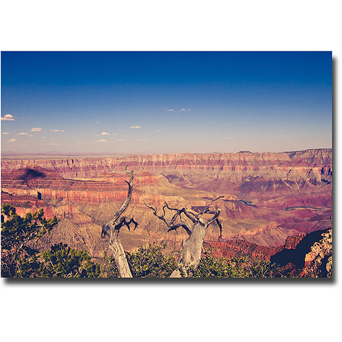 "Trademark Fine Art ""Pink Canyons"" Canvas Wall Art by Ariane Moshayedi"