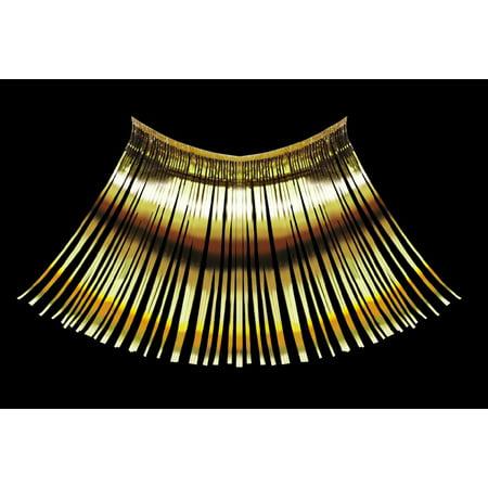 Target Halloween Eyelashes (Loftus Women Nefertiti Egyptian Costume 2pc Eyelashes, Gold, One)
