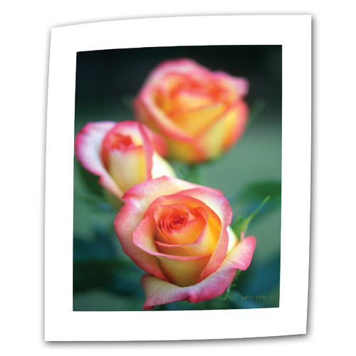 ArtWall ''Rose Trio'' by Kathy Yates Photographic Print on Canvas