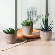 OUNONA 3pcs Decorative Faux Succulent Artificial Succulent Fake Simulation Plants with Pots