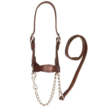 Sullivan Supply Classic Leather Flat Nose Scalloped Show Halter Small Brown