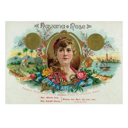 Havana Rose Brand Cigar Box Label Print Wall Art By Lantern Press ()