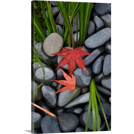 Great BIG Canvas Brian Moore Premium Thick-Wrap Canvas entitled Maple Leaves I - Ac Moore Canvas