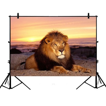GCKG 7x5ft Lion at the Sunset Polyester Photography Backdrop Studio Photo Props Background - Detroit Lions Background