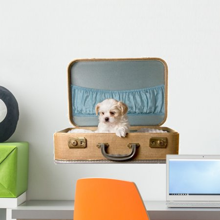 Tiny Puppy Vintage Suitcase Wall Mural by Wallmonkeys Peel and Stick G