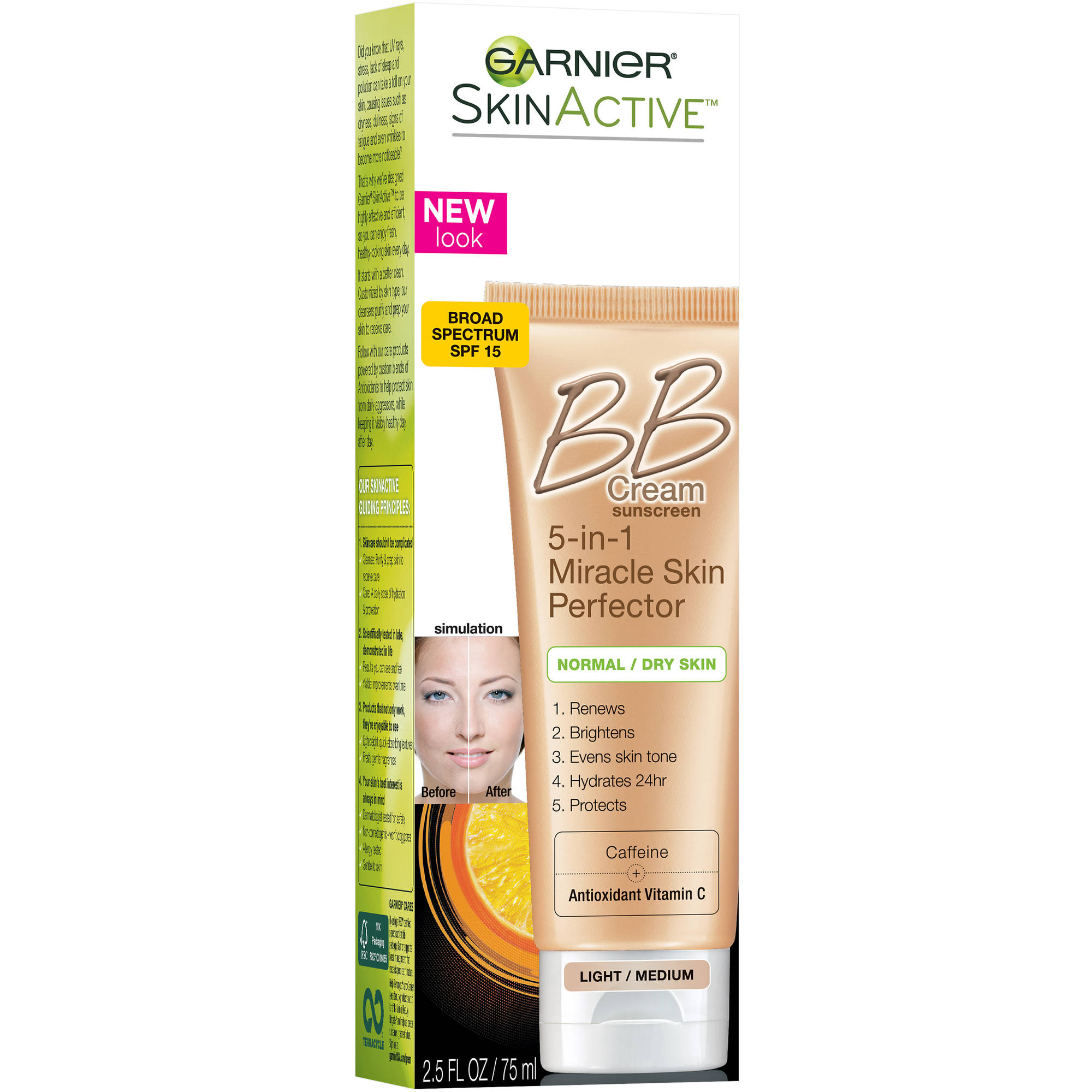 Garnier SkinActive Skin Perfector BB Cream for Normal & Dry Skin