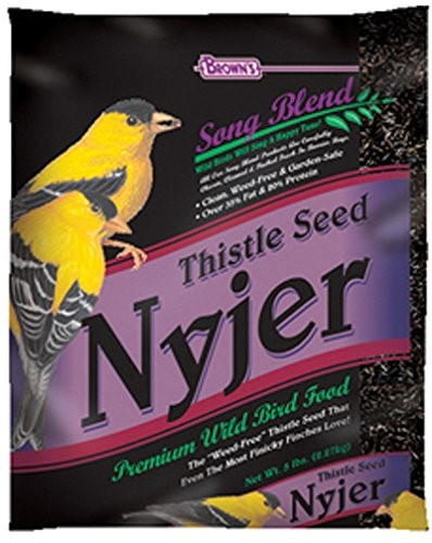 Brown's Song Blend Thistle Seed Nyjer Bird Food, 10 Lb by F.M. BROWN'S SONS, INC.