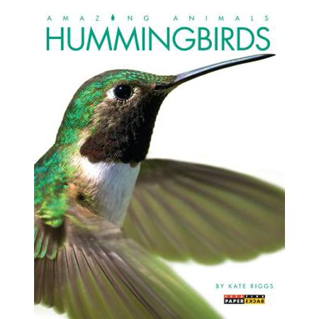 Hummingbirds Animals - Amazing Animals: Hummingbirds