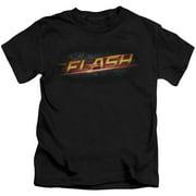 The Flash Logo Little Boys Shirt