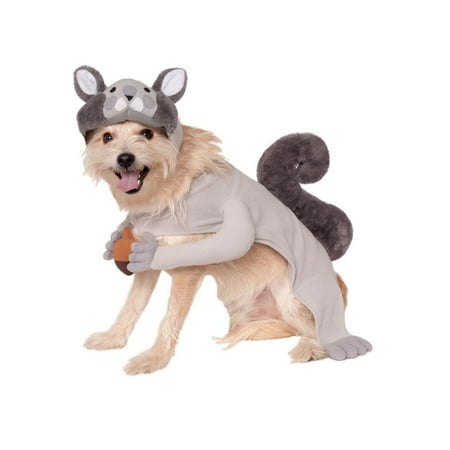 Halloween Squirrel Pet Costume - Pet Society Halloween Room