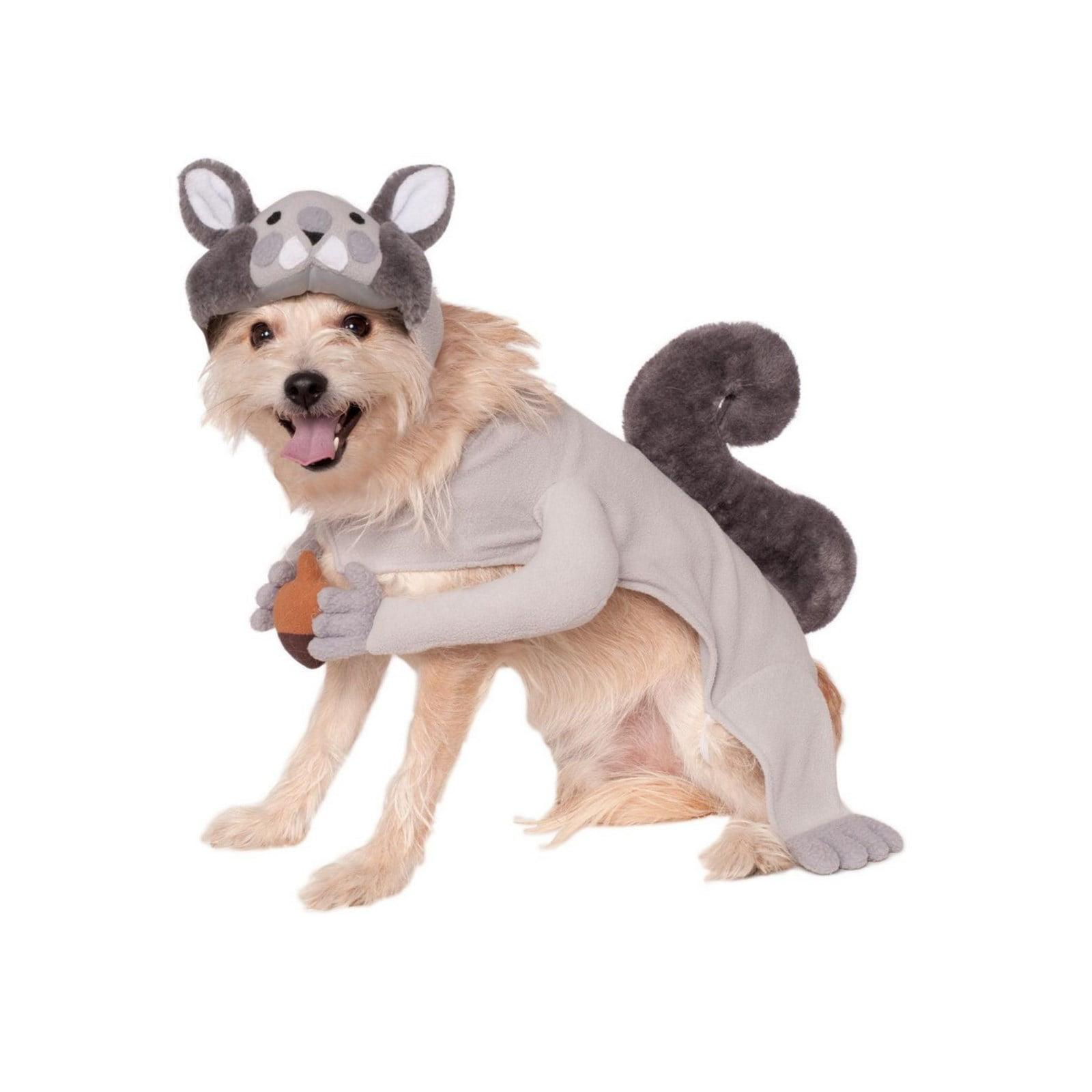 Halloween Squirrel Pet Costume