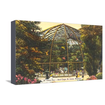 Bird Cage in Zoo, St. Louis, Missouri Stretched Canvas Print Wall Art St . Louis Zoo