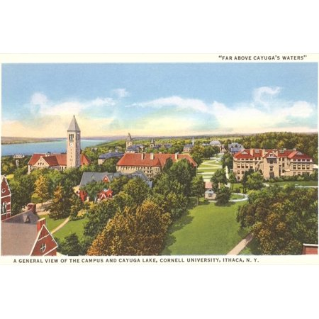 Cayuga Lake, Cornell University, Ithaca, New York Vintage Travel Postcard Print Wall Art