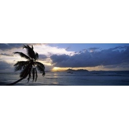 Silhouette of coconut palm tree at sunset from Anse Severe Beach La Digue Island Seychelles Canvas Art - Panoramic Images (18 x