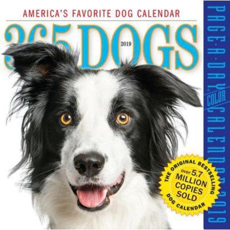 2019 365 DOGS BOX CALENDA R
