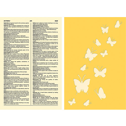 Jillibean Soup Stamp and Stencil Set, Butterfly Dictionary