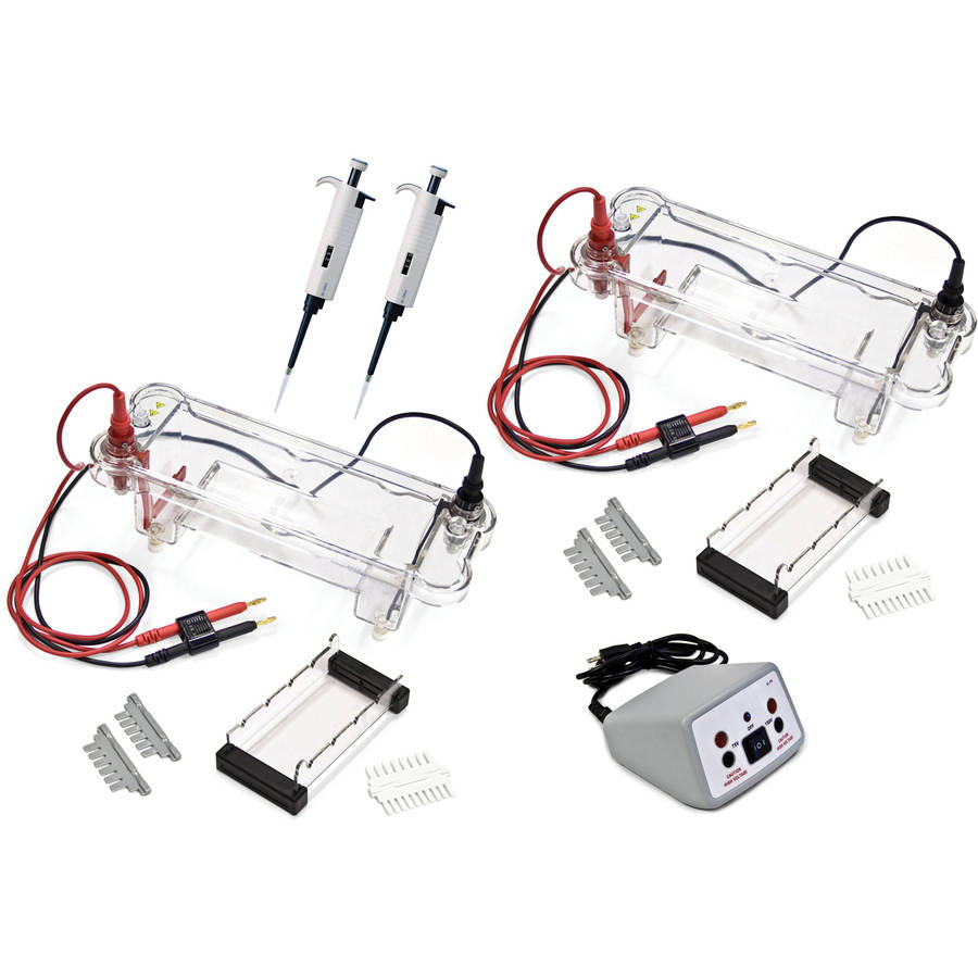 Walter Products Electrophoresis Dual Station
