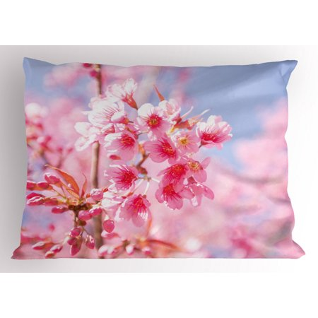 Floral Pillow Sham Sakura Blossom Branches Flower Essence Fragrance Nature Inspired Picture, Decorative Standard Queen Size Printed Pillowcase, 30 X 20 Inches, Pale Pink Purplegrey, by Ambesonne Bloom Pillow Sham