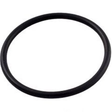 Pentair R172319 Bottom O-Ring for Pool or Spa In-Line Automatic Feeder
