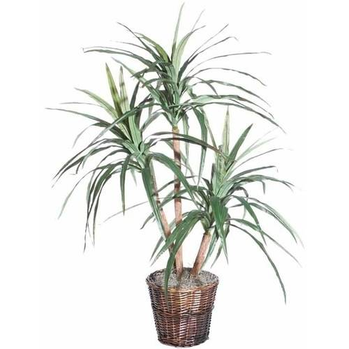 Vickerman 4' Artificial Marginata Extra Full in a Rattan Basket