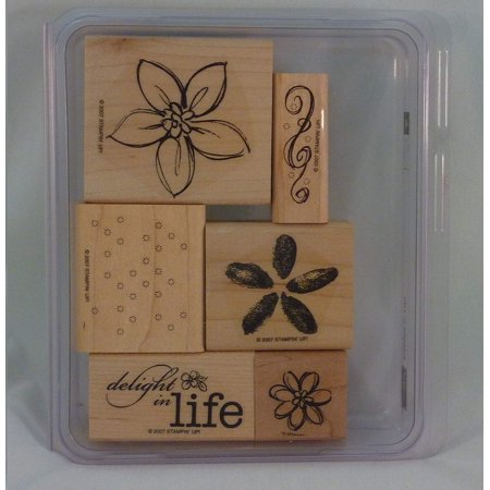 Stampin' Up! DELIGHT IN LIFE Set of 6 Decorative Rubber Stamps Retired, Set of 6 stamps in original placon box By Stampin (Stampin Up Wonderland Stamp Set For Sale)