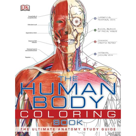 The Human Body Coloring Book : The Ultimate Anatomy Study Guide