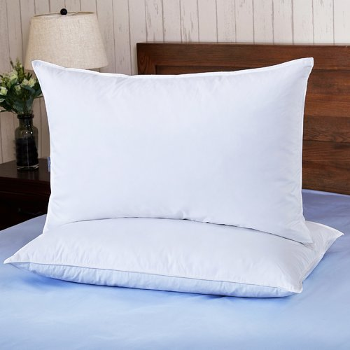 Puredown Down and Feathers Pillow (Set of 2)