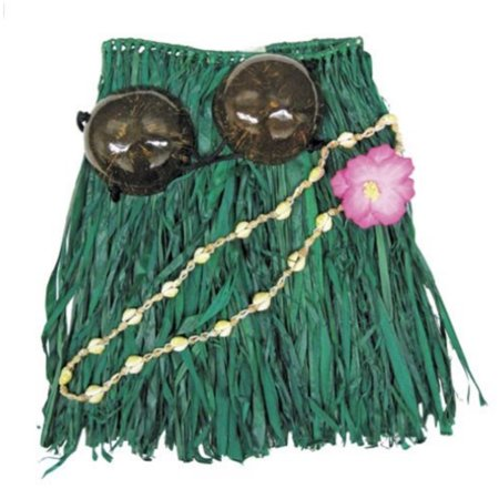 Hawaii Hula Skirt Set Coconut Top Green Adult 36