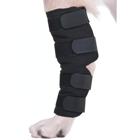 - AGON® Canine Dog Hock Brace Rear Leg Joint Wrap Protects Wounds as they Heal, Compression Wrap, Heals and Prevents Injuries and Sprains Helps with Loss of Stability Caused by Arthritis (Medium)