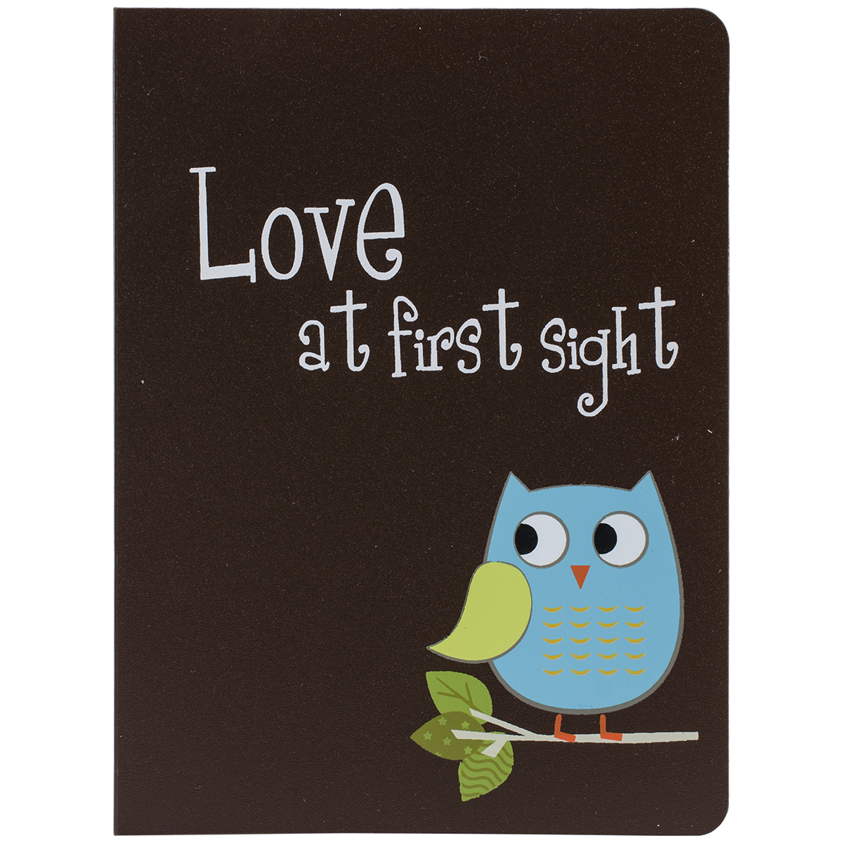 Pioneer Baby Owl Brag Book A-Poundum, 4 by 6-Inch, Assorted Multi-Colored