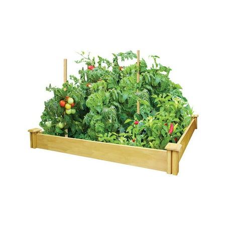 Greenes Garden Bed 5 1 2 H X 48 W X 48 L Cedar