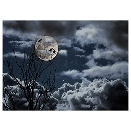 ABPHOTO Polyester Photography Background Photo Backdrops Magic Theme Photography Studio background Horror night branches, crows, moon for Halloween 7x5ft (Inside The Magic Halloween Horror Nights)