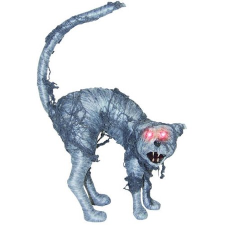 Sonic Gray Cat