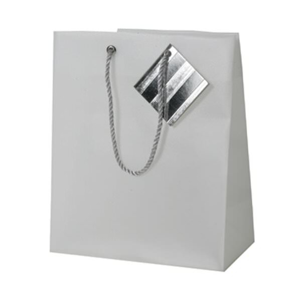 JAM Opaque Shopping Bags - Small - 7 1/2 x 9 x 4 - Clear ...
