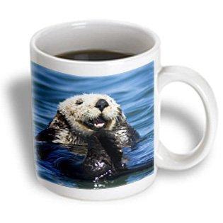 3dRose California Sea Otter, Moss Landing, California - US05 JGS0198 - Jim Goldstein, Ceramic Mug, 15-ounce