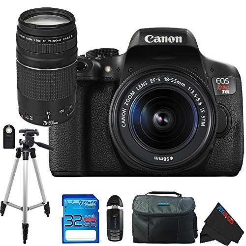 Canon EOS Rebel T6i DSLR Camera with Canon EF-S 18-55mm f/3.5-5.6 IS STM Lens + Canon EF 75-300mm f/4-5.6 III Lens + Pixi-Essentials Accessory Bundle