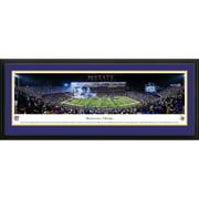 """Minnesota Vikings 18"""" x 44"""" Deluxe Frame Stadium Panoramic Photo"""
