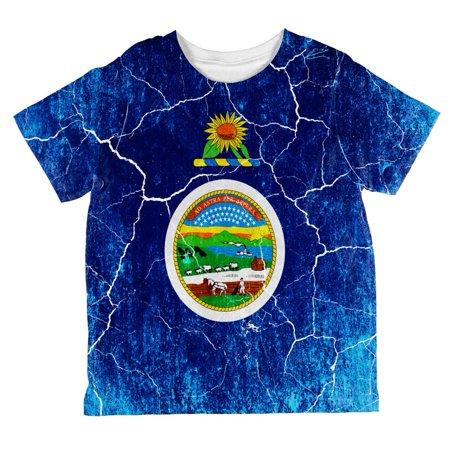 Kansas Vintage Distressed State Flag All Over Toddler T Shirt (Vintage Kansas State)
