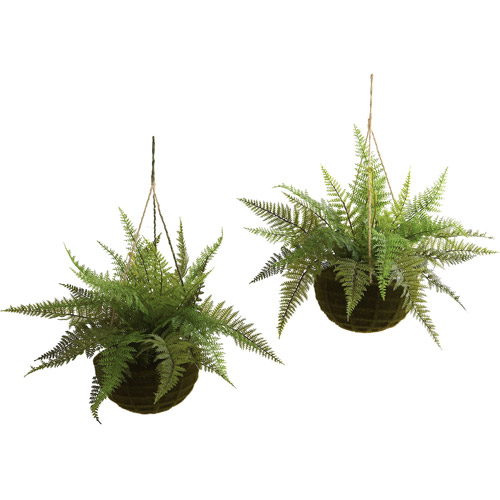 Nearly Natural Leather Fern with Mossy Hanging Basket, Indoor and Outdoor, 2pk