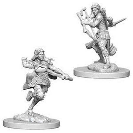 - Dungeons & Dragons Nolzurs Marvelous Miniaturess of Air Genasi Female Rogue W4