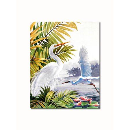 Tropical Beach Pictures (Egret Bird Tropical Lake Beach Wildlife Landscape Wall Picture 8x10 Art Print)