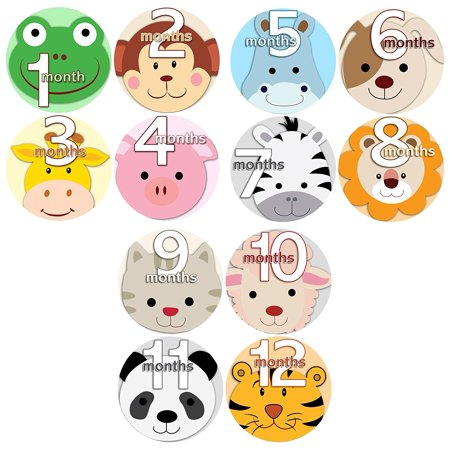 37cfd51fa ... FACES Baby Boy Girl Monthly Onesie Stickers Baby Month Onesie Stickers  Baby Shower Gift Photo Shower Stickers, safari jungle monkey hippo cat dog  lion ...