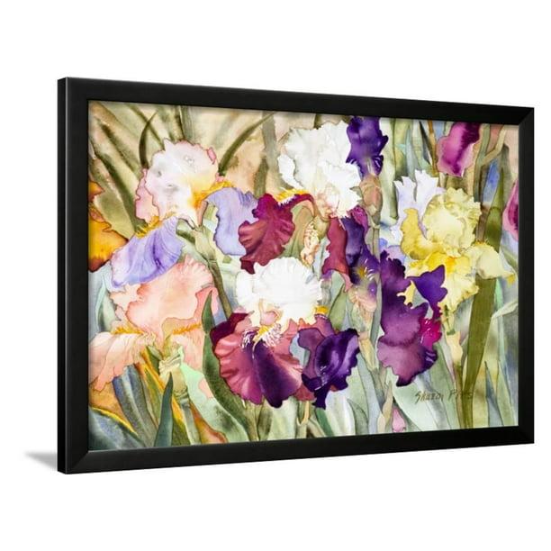 Iris Garden I Framed Print Wall Art By Sharon Pitts Walmart Com Walmart Com